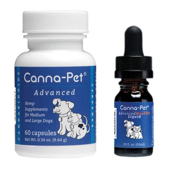 SA Clinical Cannabis Convention - Ep 3