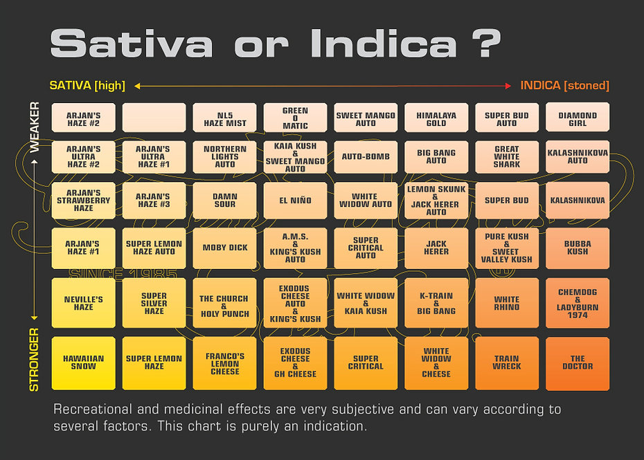 Chart showing the differences between Indica and Sativa. Weak to Strong, and high to stoned.