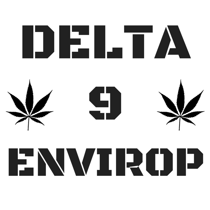 D9E logo1
