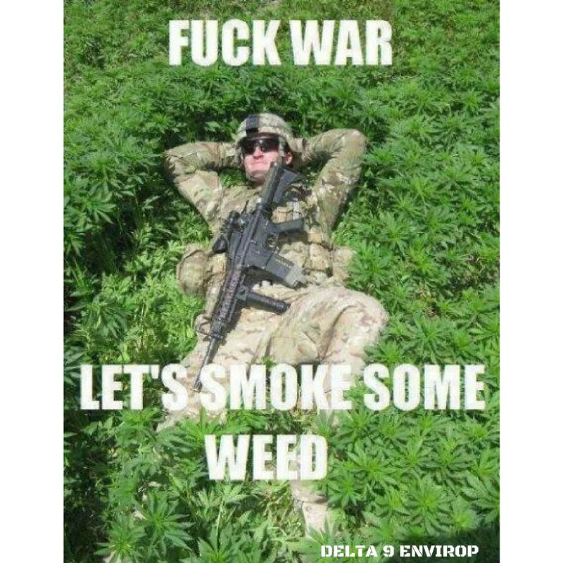 DELTA 9 ENVIROP meme fuck war