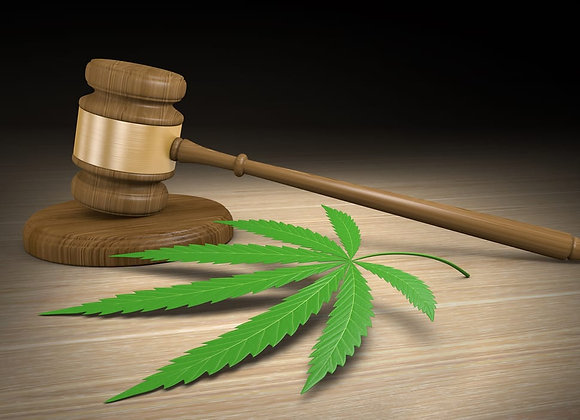 SAHPRA Accredited Cannabis Licence Package