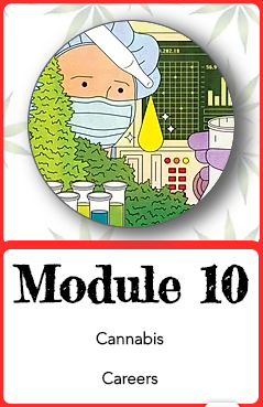 Module 10.png