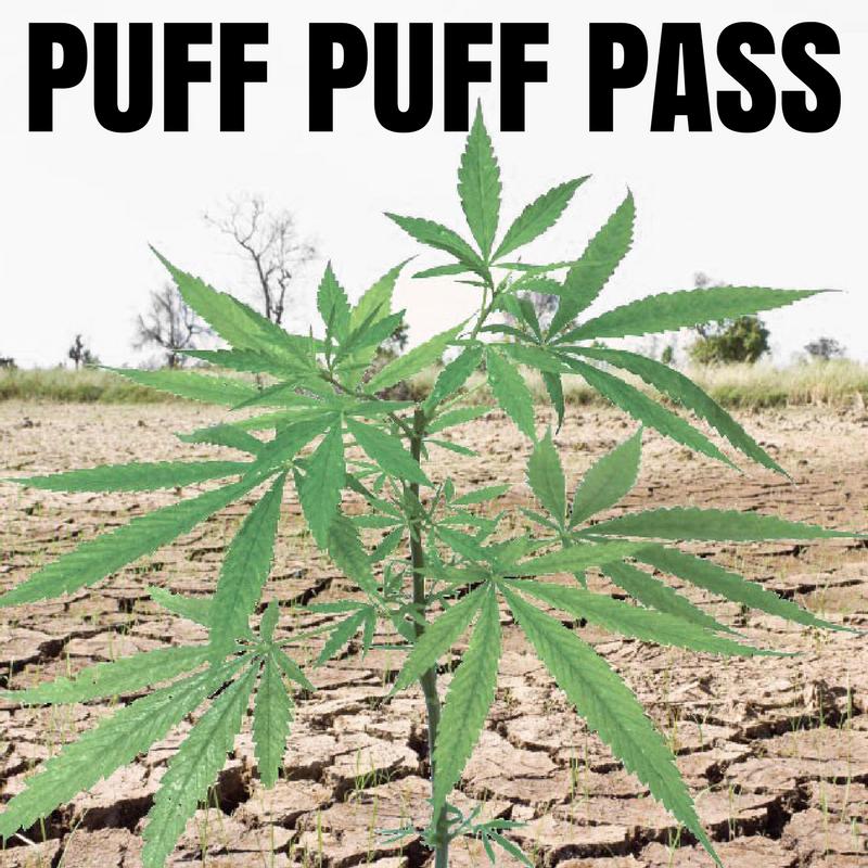 Delta 9 Envirop meme puff pass