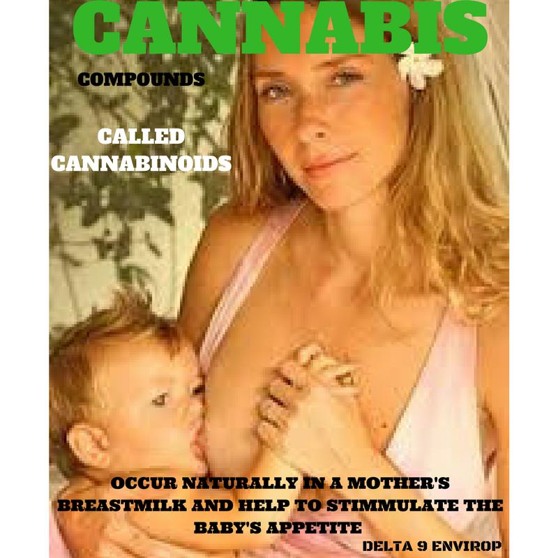 Delta 9 Envirop meme breast-feeding cannabinoids