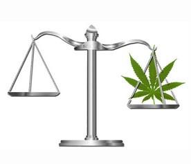 Marijuana Scales of Justice