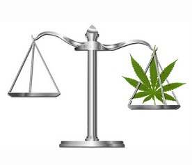 Dagga Ingredient CBD Just Became Fully Legal For Anyone To Sell In South Africa – But Only For The N