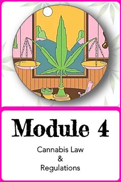 Module 4.png