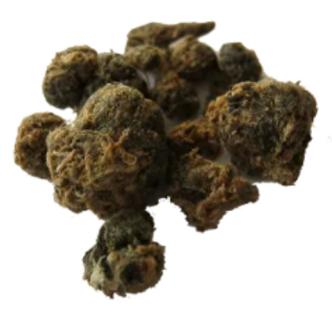 Making Cannabis Medicine Studies