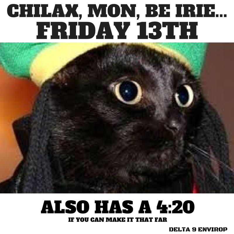 Delta 9 Envirop meme Friday 13th chillax