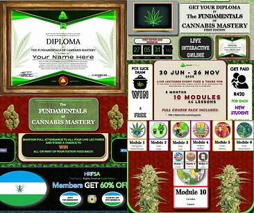FCM Ad 1a.png
