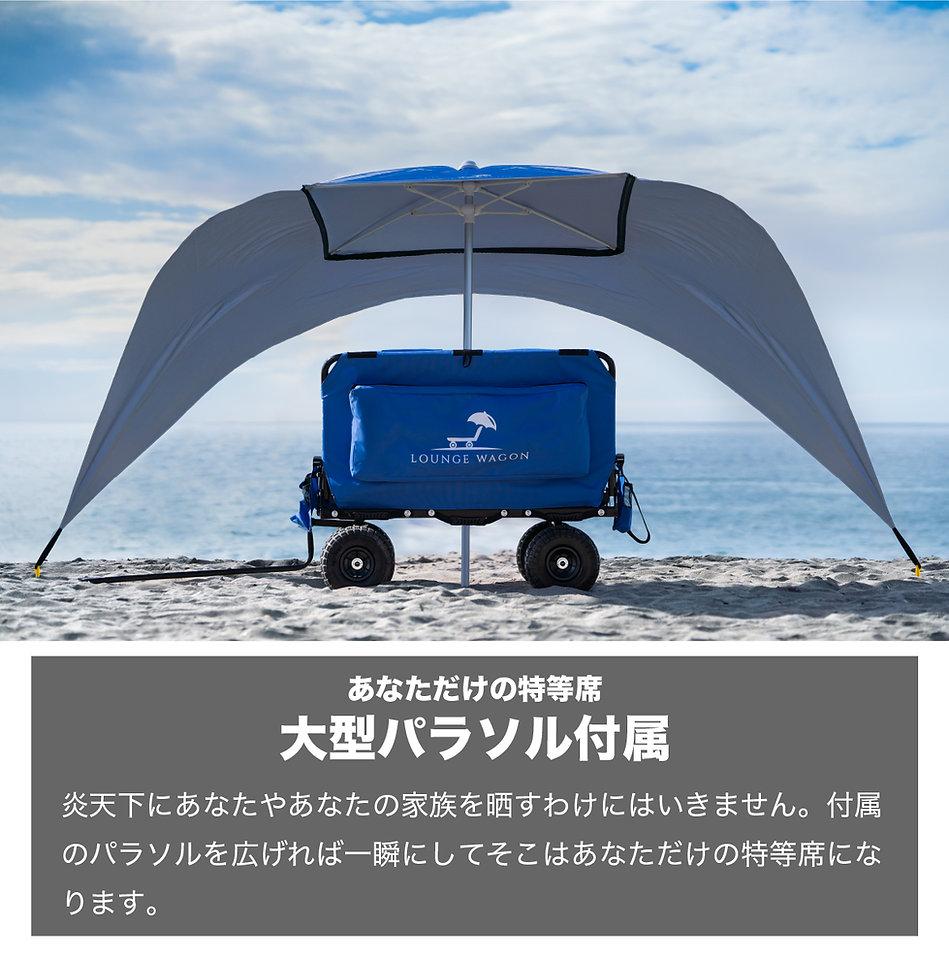 ts-wagon-009.jpg