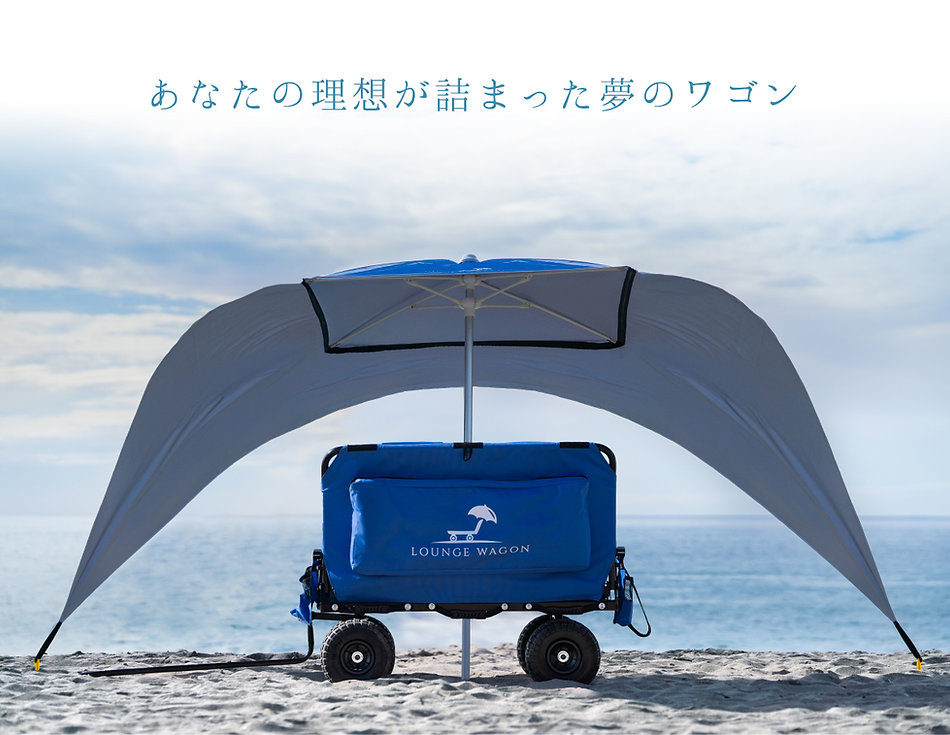 ts-wagon-004.jpg