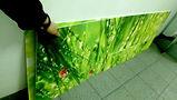 Стеновая панель из поликарбоната