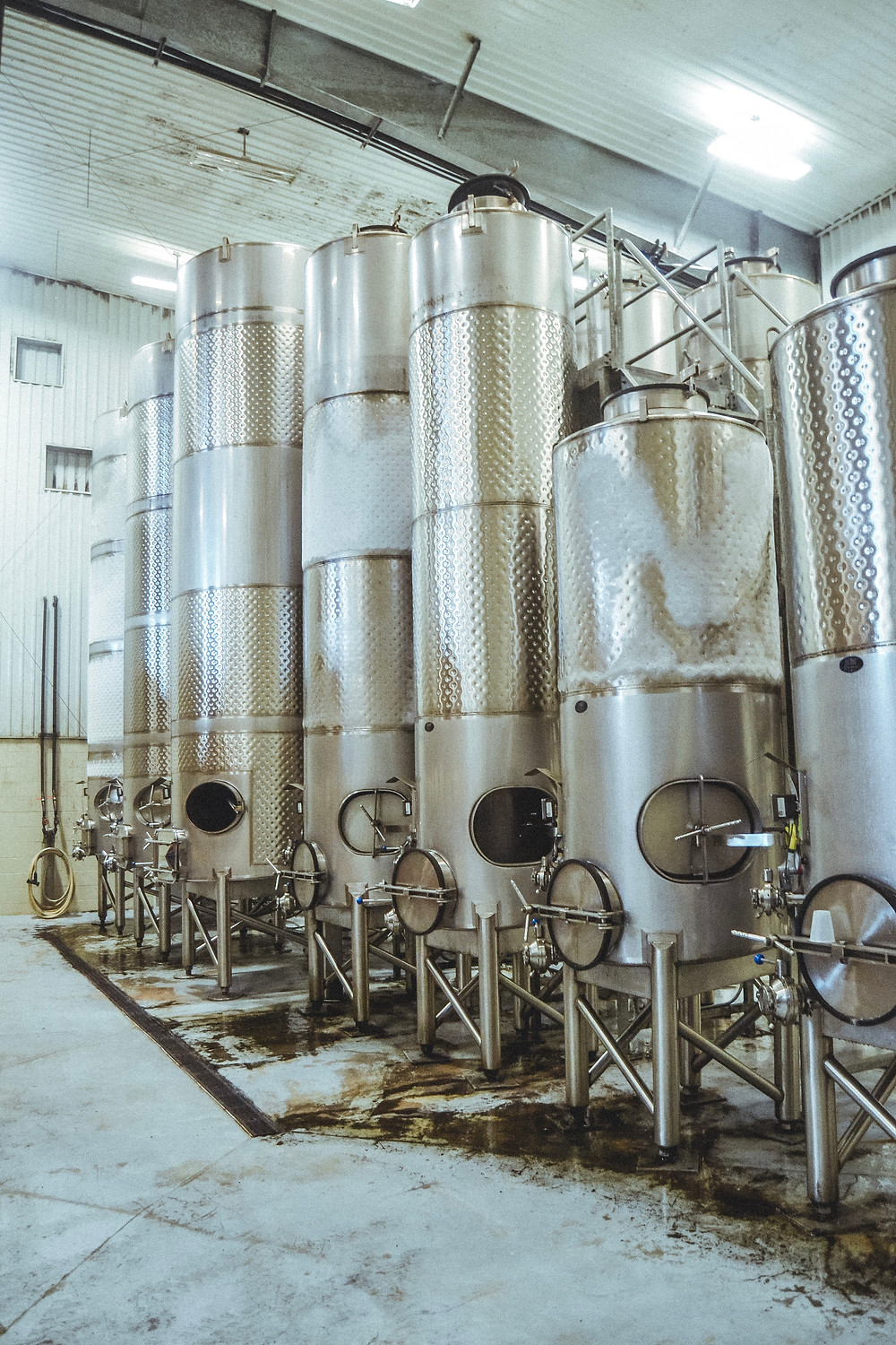 steel tanks for white wine at duchman family wine