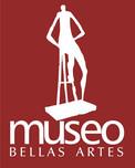 ISOLOGOS DEL MUSEO.JPG