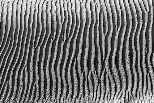 Zebra Striped Sand