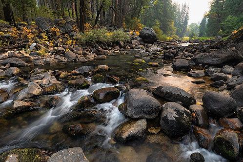 Yosemite River Fall Colors