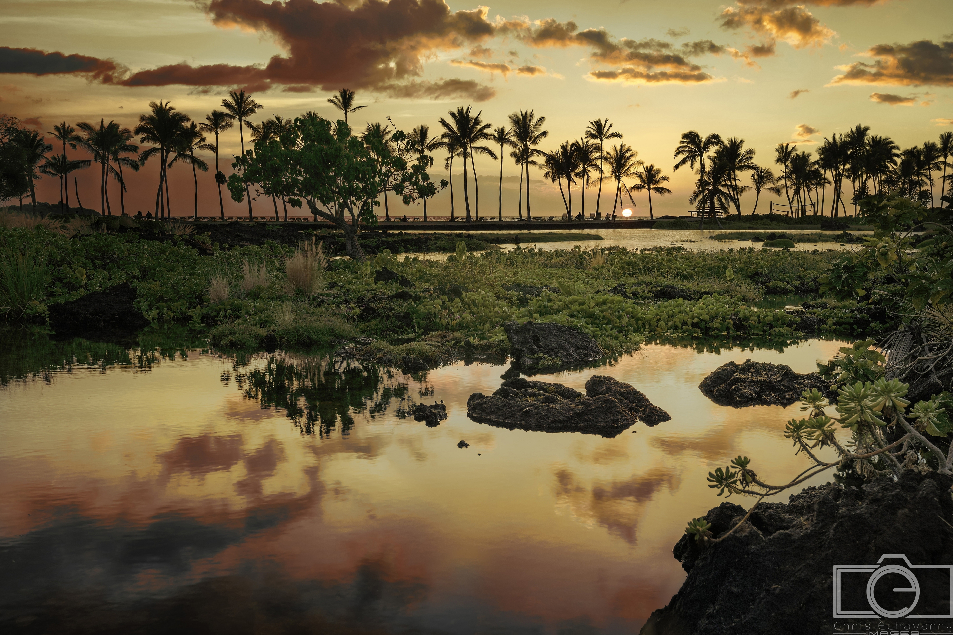 big island hawaii sunset palm water