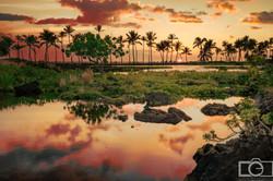 big island hawaii sunset palm water
