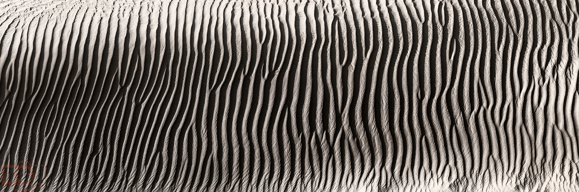 Zebra sand dunes california