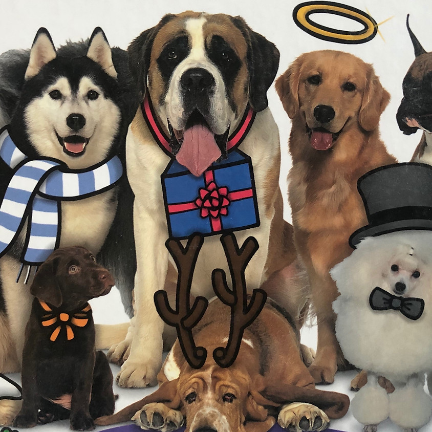Registration Closed: Dec 20: Twelve (Down) Dogs of Christmas (Ages 6-9)