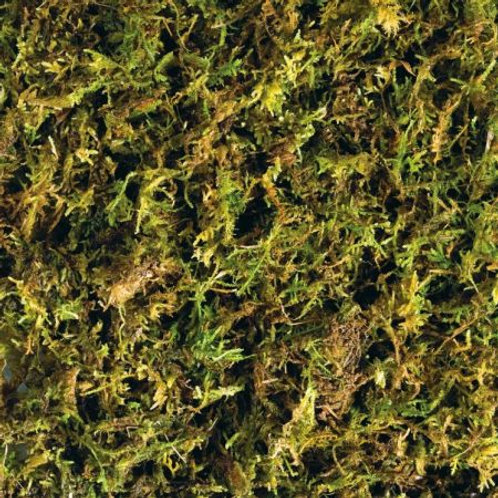 Exo Terra Forest Moss Tropical Terrarium Reptile Substrate