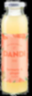 DANDI Turmeric Ginger