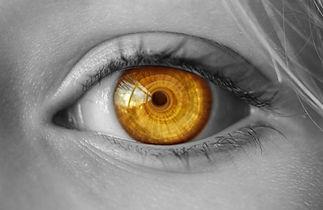Component Eyed - Green Brook Electronics Online Affiliates