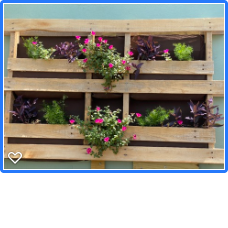Planter box Pallet on wall