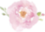 pink flowersmall.png
