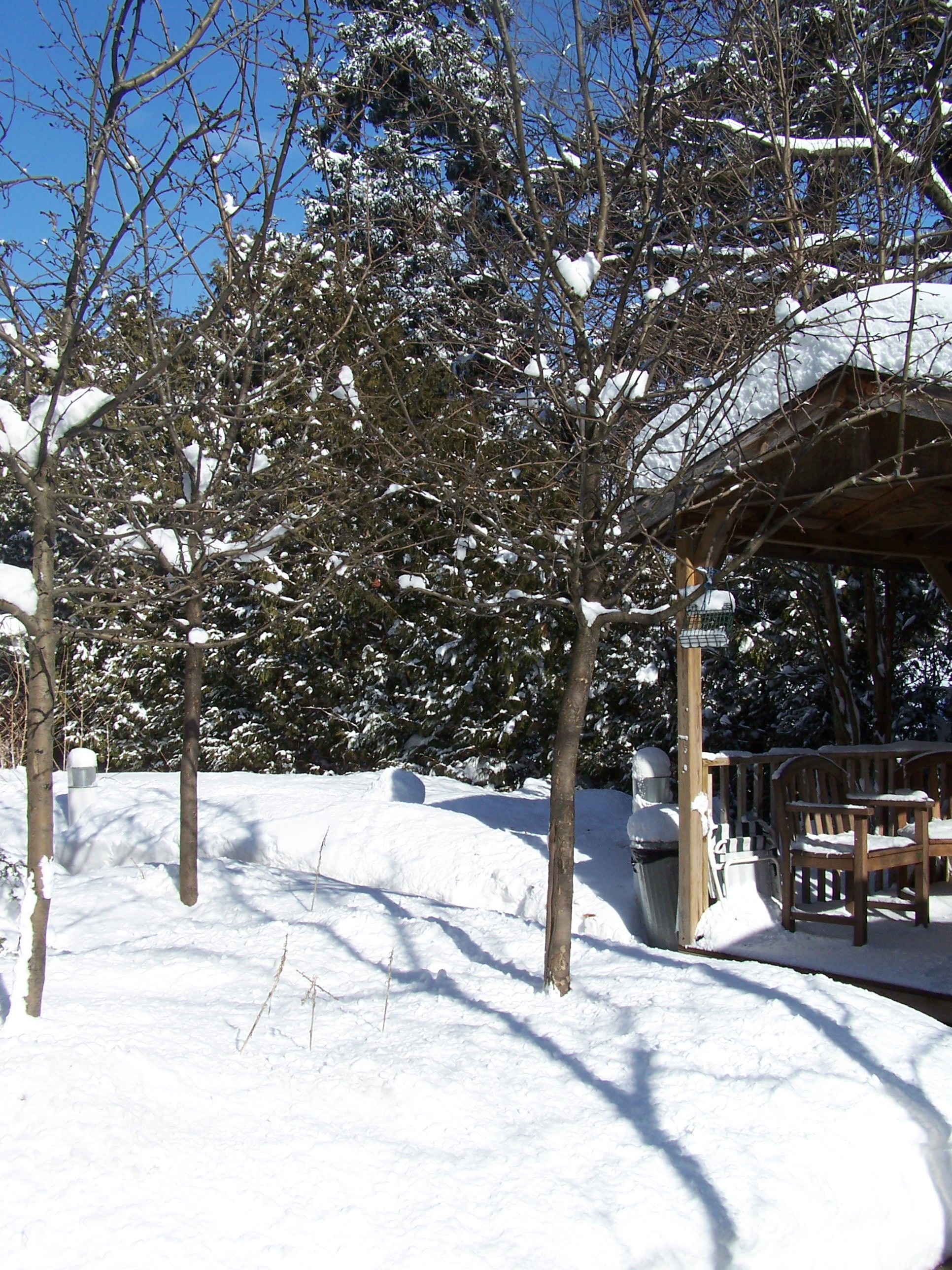 Winter view of Gazebo