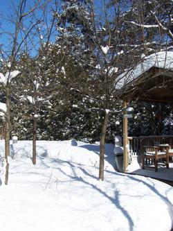 Winter view of Gazebo