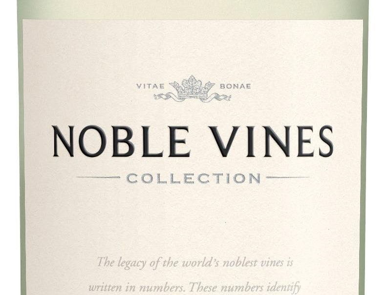 Noble Vines Pinot Grigio