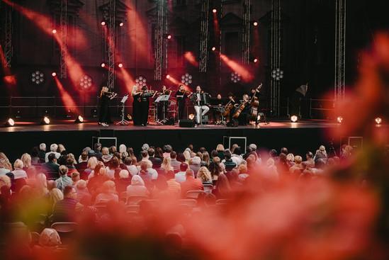 koncertas - Martynas Levickis