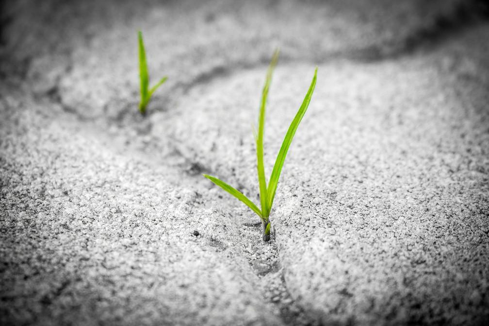 Pushing Through & Breaking Ground