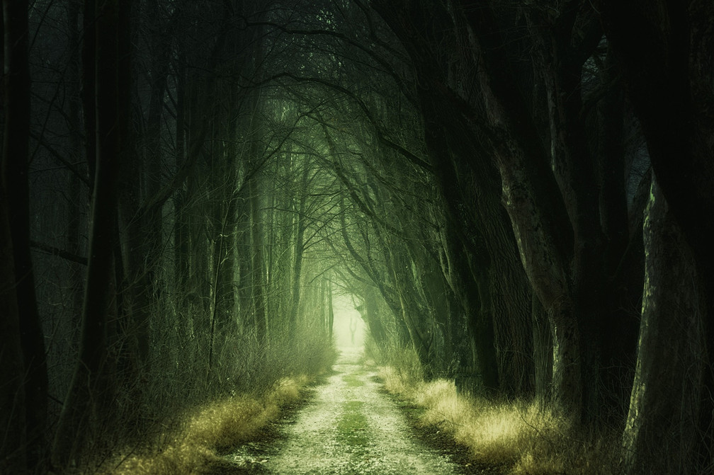 Finding the Path Through the Pain: a Roadmap to Rebuilding Your Life After Cancer