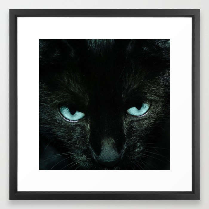 Framed Art Prints Black Cat in Turquoise