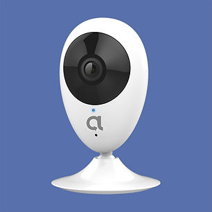 Indoor Mini  - web.jpg