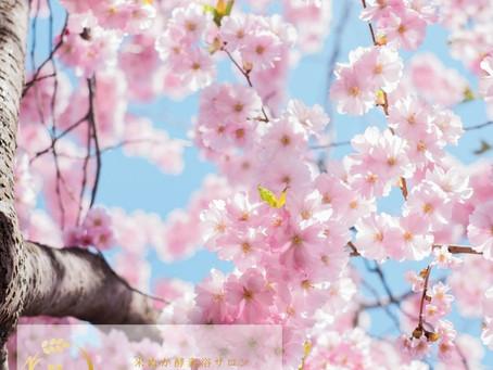 【スタッフブログ】季節の変わり目のゆらぎ肌に酵素浴♪