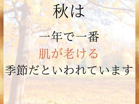秋は一年で一番肌が老ける季節だといわれています