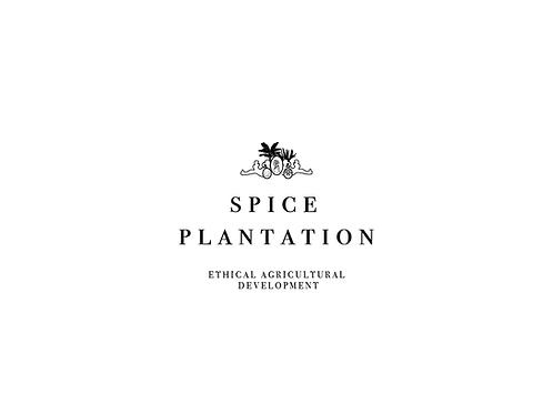 premade logo- crest logo, palms and cameo- plantation logo- empire style