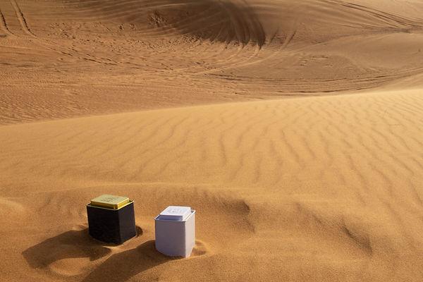 teas Desert 3.jpg