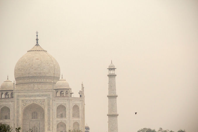 india 34.jpg