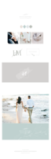 Wedding photography in Greece branding, including a Laurel branch and olive branch as an accent. a couple on a beach, soft colors with a blue accent. Branch logo with seafoam accents.
