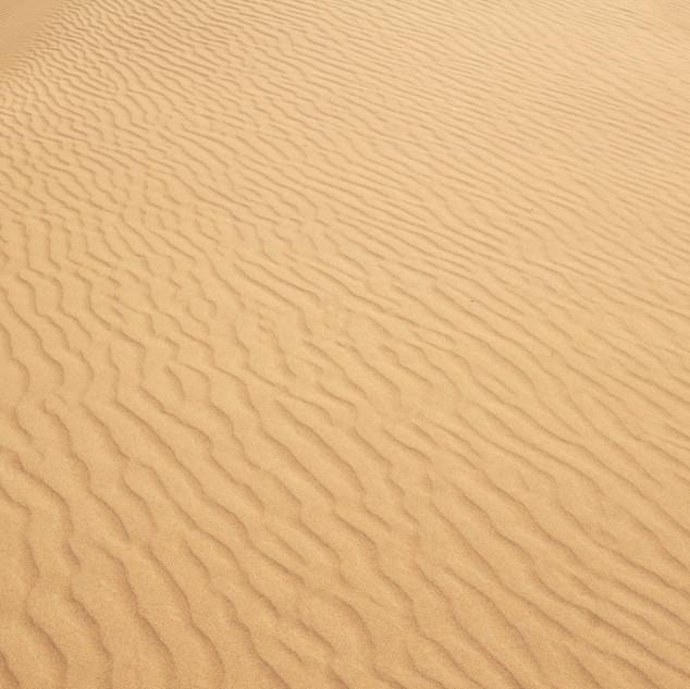 sands detail.jpg