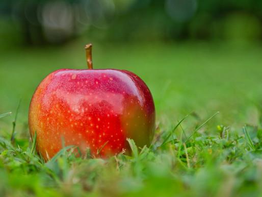 Ябълков оцет - лечебни свойства и приложения