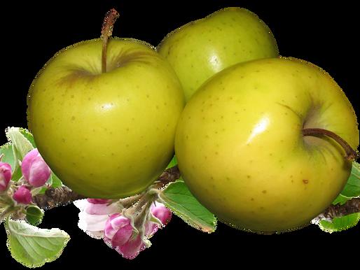 Пийте всяка сутрин ябълков оцет и мед на гладно и ще се случи ЧУДО