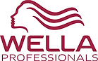 wella logo red.png
