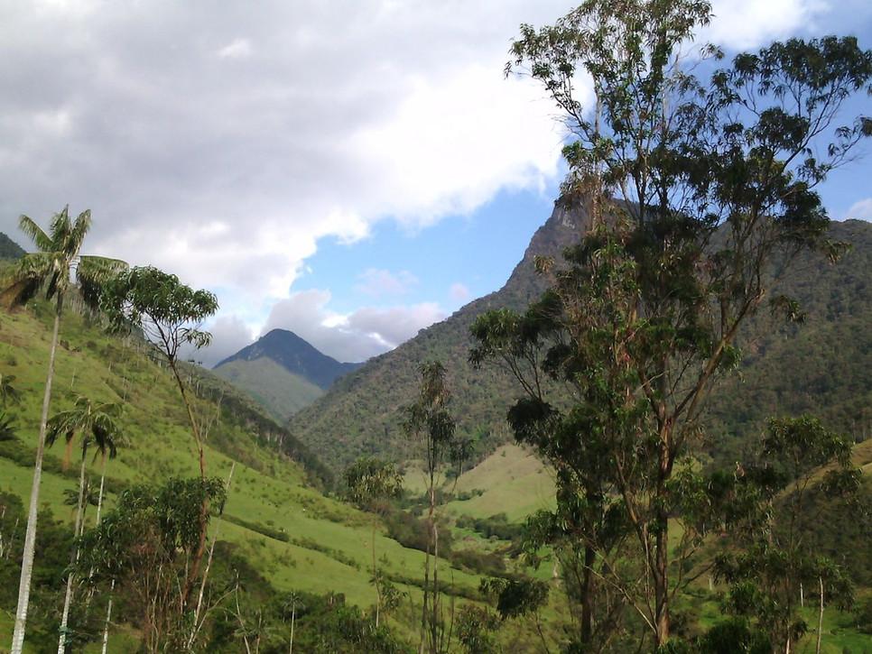 Paysages merveilleux et couleurs de la Colombie ...