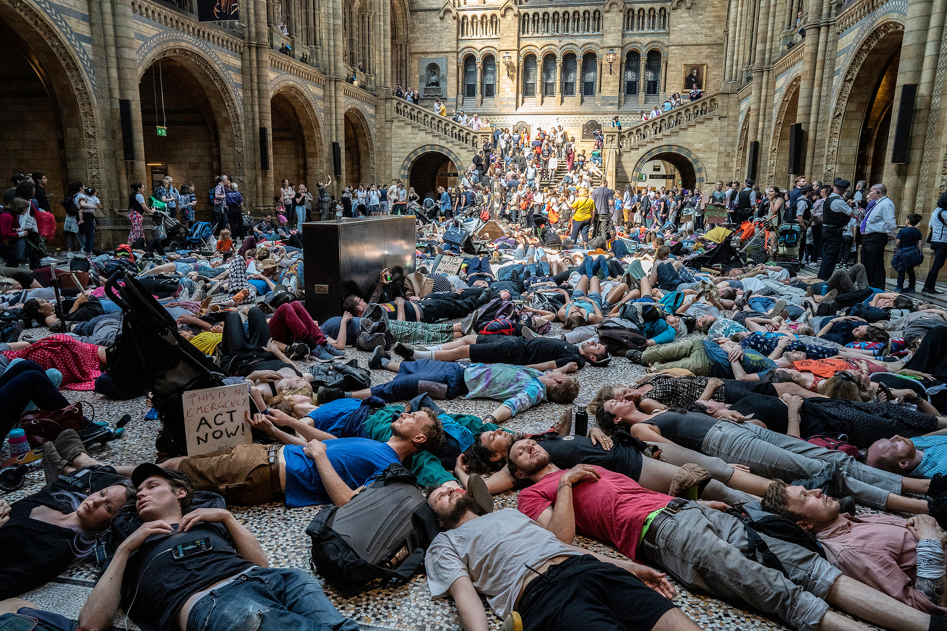 Dozens of protesters stage a 'die-in' at the Natural History Museum